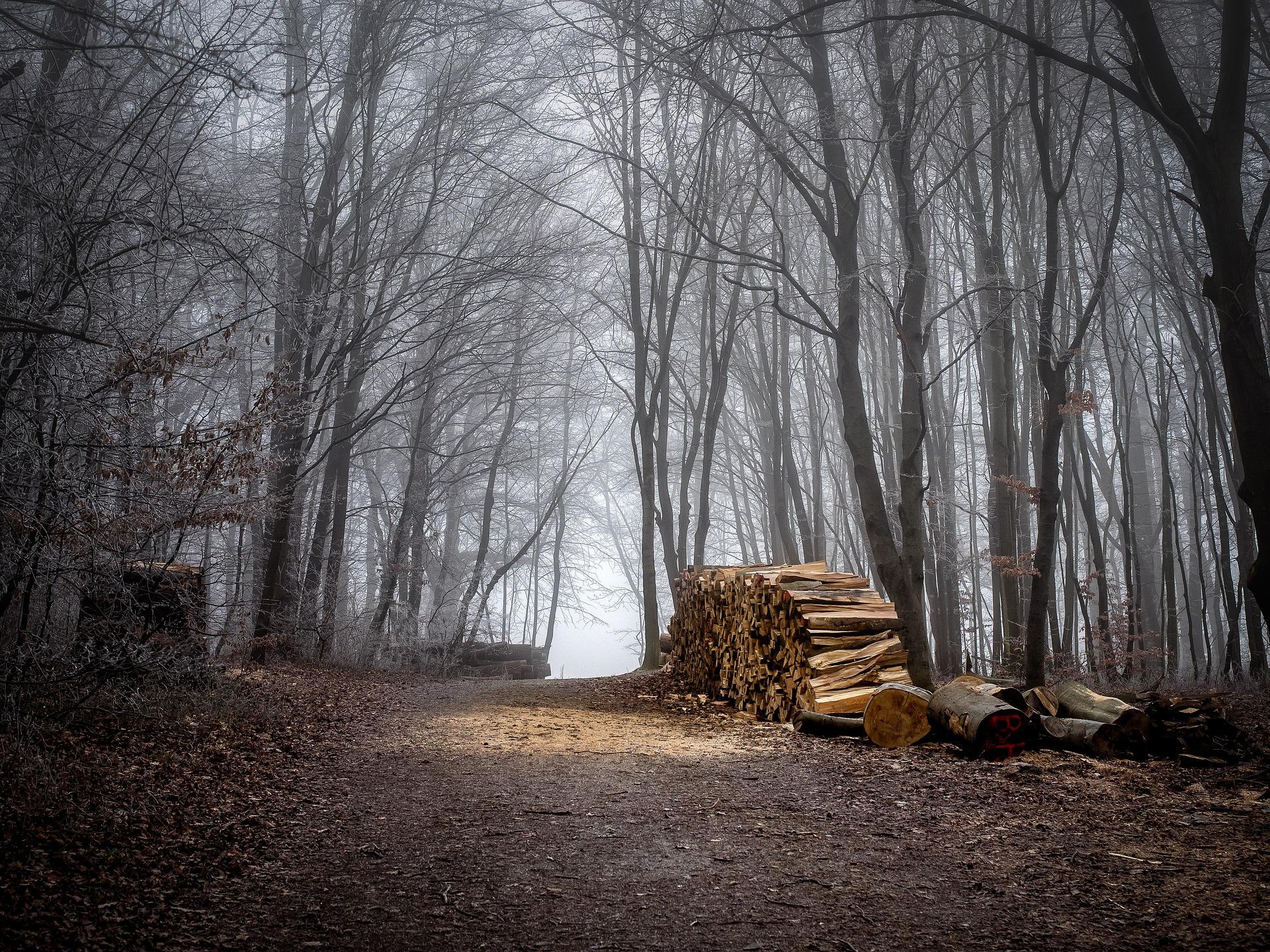 Ödön von Horváth, Geschichten aus dem Wienerwald