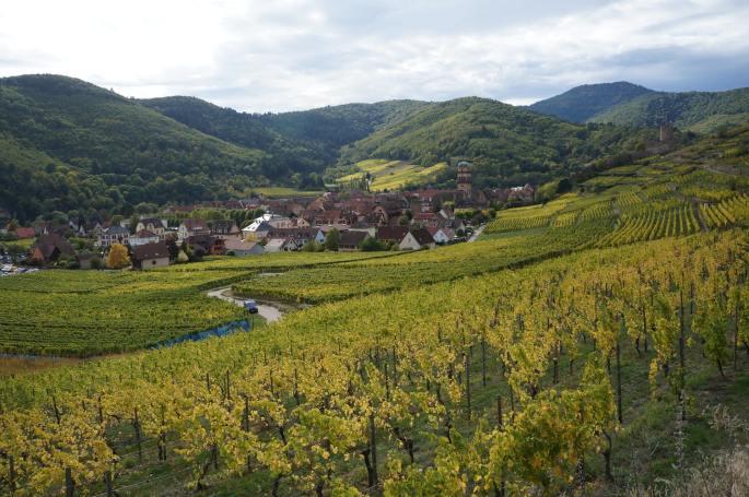 Das Bild zeigt einen Ort und Landschaft im Elsass